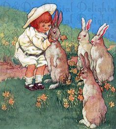 Loads of bunnies.