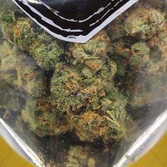 Buy OG Kush inside our Dispensary Cannabis Seeds Online, Cannabis Seeds For Sale, Cannabis Oil, Growing Marijuana Indoor, Cannabis Growing, Autoflowering Seeds, Weed Strains, Overnight Shipping, Buy Weed
