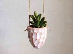 TerraCotta Hanging Planter  Small Planter  by PotteryLodge on Etsy