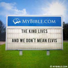 Christian Humor The King lives ◕‿◕。                              …