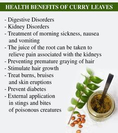 Health Benefit Of Curry Leaves Ayurvedic Herbs, Healing Herbs, Medicinal Plants, Ayurveda, Health And Wellness, Health Tips, Health Care, Herbs