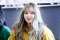 Wendy Seulgi, Kpop Girl Groups, Korean Girl Groups, Kpop Girls, Park Sooyoung, Irene, Wendy Red Velvet, Girl Inspiration, Woman Crush