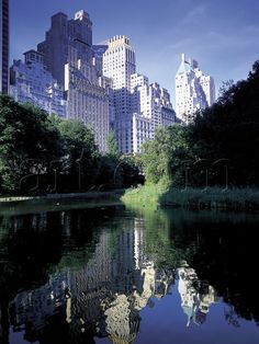 NYC. Central Park,  south west corner in the morning // by Peter Adams