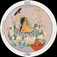 This article concludes the essay on the Motherpeace Major Arcana cards. The person has already traveled past some of the harder tests in the second part of the Fool's Journey through life. Gaian Tarot, Star Tarot, King Of Wands, Star Goddess, Major Arcana Cards, Spiritual Symbols, Oracle Cards, Deck Design, Tarot Decks