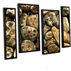 ArtWall Kevin Calkins Petoskey Stone Collage 4-Piece Floater Framed Canvas Staggered Set, Size: 36 x 54, Black