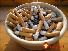 Vošky som objavil na ibišteku a povedal som si, že ešte v ten deň na ne niečo vyskúšam, na internete je veľa návodov na bio postreky čo neškodia a dajú sa vyrobiť doma. Našiel som jeden, ktorý obsahoval tabak, no nechcelo sa mi vytriasať tabak z cigariet a tak som použil cigaretové ohorky z popolníka....