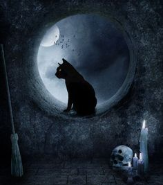 A black cat with the moon for Hallowe'en. But make no mistake about it, black cats are lucky...