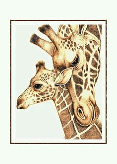 Artículos similares a Mom and Baby Giraffes Note Card Set of 10 en Etsy Giraffe Drawing, Giraffe Painting, Giraffe Art, Animal Paintings, Animal Drawings, Baby Animals, Cute Animals, Wild Animals, Giraffe Pictures