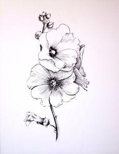 Die 5164 Besten Bilder Von Blumen Zeichnen In 2019 Blumen