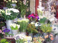 flower shop display in Paris