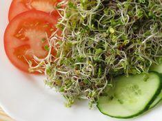 3 nap alatt termett a csíra: ha van egy üres üveged, próbáld ki! Seaweed Salad, Vitamins, Paleo, Health, Ethnic Recipes, Food, Website, Health Care, Essen