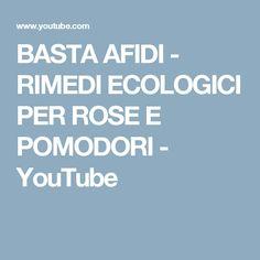BASTA AFIDI - RIMEDI ECOLOGICI PER ROSE E POMODORI - YouTube