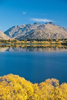 Autumn Trees And The Remarkables Reflected In Lake Hayes Central Otago South Island