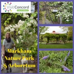 Markham is Concord's secret garden! This 17-acre island of natural beauty near the heart of downtown Concord will amaze you! The park includes an International Garden, rose and camelia gardens, bee farm, community garden and a path that link to other parks.