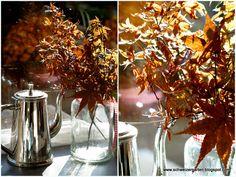 Ein Schweizer Garten - Herbstblätter konservieren