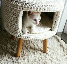 Crochet for pets Gato Crochet, Crochet Hammock, Cat Couch, Cat Playground, Foto Baby, Cat Decor, Cat Furniture, Crochet Home, Crochet Animals