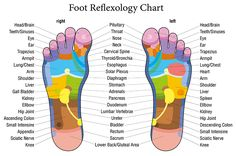 How A Simple Foot Massage Can Yield Surprising Health Benefits http://www.wimp.com/surprising-health-benefits-of-simple-foot-massage-reflexology/