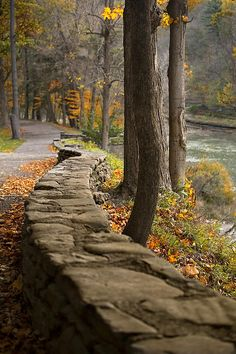 Genesee River in Letchworth State Park, NY © One Red Tree Photography