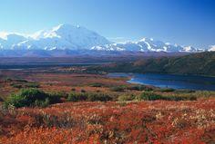 Tundra. Lo podemos ubicar en América del norte. Algunos de los problemas ambientales que pueden afectarlo son: Contaminación del aire, explotación de recursos (petróleo).