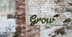 Leuk je buitenmuren op met zelfgemaakte mos graffiti.