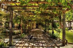 This would make a great garden trellis walkway in our back yard.