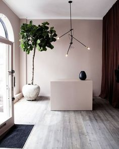 Dusty pink walls with grey washed timber floors make this @yvonnekone Copenhagen based boutique so dreamy.