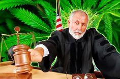 Prohíben llevar a juicio casos de marihuana medicinal en Estados Unidos - http://growlandia.com/marihuana/prohiben-llevar-a-juicio-casos-de-marihuana-medicinal-en-estados-unidos/