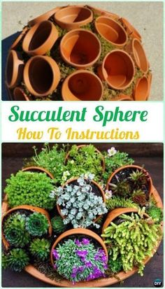 DIY Flower Clay Pot Succulent Sphere Instruction- DIY Indoor Succulent Garden Ideas Projects #artsandcraftshouse, #LandscapingPlans