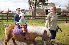 Farm Stay - Animal Land Children's Farm