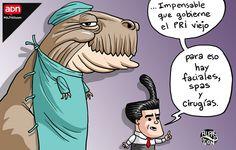 'Lifting político', el cartón de Alarcón - opinion - ADNPolítico.com