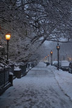Boston street in the winter. Love this one.