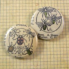 Bees and Ladybugs Pinback Button Set by XOHandworks