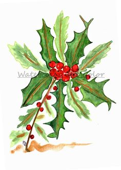 Hollie Berries Watercolor, Print Fine Art, Title: Hollie Berries With Gold - Christmas Gift, Giclee, Holidays Gifts,Joy, Peace, and Love