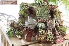 Simple Succulent wreath tutorial