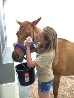 Peaches was pretty stressed when we got to the hospital. Katie came to help her relax. It worked. #bhfer #helpahorse #charity