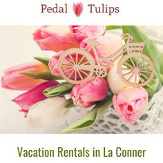 Edit Page ‹ Pedal Tulips Vacation Rental — WordPress.com