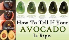 Avocado ripe test