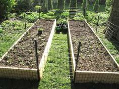 Basic fencing idea for keeping the dog out of my raised beds