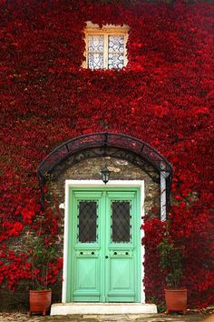 Beautiful green doors in a wall of red flowers.  I love color.  Notice the wrought iron awning.