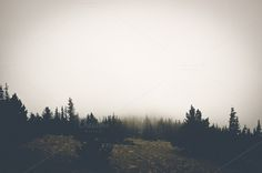 Mist Mountain by BrightSpace on Creative Market