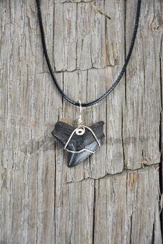 Tiger Shark Tooth Necklace by JustBeadHappy2 on Etsy https://www.etsy.com/listing/241917542/tiger-shark-tooth-necklace