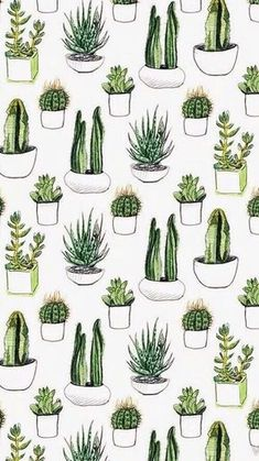 background, fondos, green, pattern, plants, sfondi, tumblr, wallpaper, First Set on Favim.com