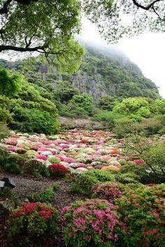 Mifuneyama Park, Saga, Japan