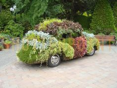 Google Image Result for http://www.shutterpoint.com/photos/A/596852-flower-vw-beetle-minter-Gardens-chilliwack-BC-Canada_view.jpg