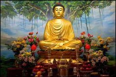 Festivals of India: Buddha Purnima is a great festival of Weavers.