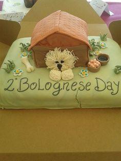 torta cane bolognese