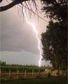 Lighting and vines Mendoza Argentina