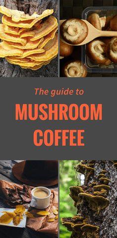 Mushroom Coffee: The Super Healthy and Super Strange Coffee Craze Coffee Tasting, Coffee Drinks, Coffee Coffee, Coffee Time, Coffee Cups, Coffee Pot Cleaning, Best Coffee Roasters, Coffee Benefits, Great Coffee