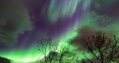 Auroras boreales desde Saariselkä, Finlandia – El Universo Hoy