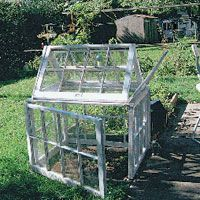 greenhouse from old windows Greenhouse Ideas, Backyard Greenhouse, Small Greenhouse, Old Window Greenhouse, Old Windows, Small Windows, Website, Amazing Gardens, Web Images